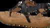 Zwarte UGG Sandalen ALEIGH  - small