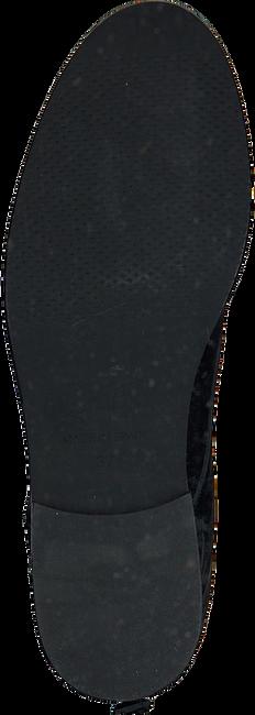 TORAL Bottines à lacets 10944 en noir - large