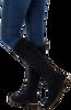 LAMICA Bottes hautes KISMAL en bleu - small