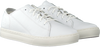 Witte TIMBERLAND Lage sneakers ADV 2.0 CUPSOLE MODERN OX  - small