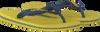 HAVAIANAS Tongs KIDS BRASIL LOGO en jaune - small