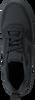 NIKE Baskets COURT BOROUGH LOW (KIDS) en noir - small