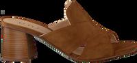 Brown UNISA Mules MANOLI  - medium