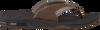 REEF Tongs FANNING en marron - small