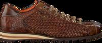 Cognac HARRIS Nette schoenen 5339 - medium