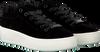 STEVE MADDEN Baskets BERTIE-V en noir - small