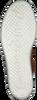 PAUL GREEN Baskets basses 4841-006 en cognac  - small