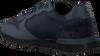 BJORN BORG Baskets R605 LOW KPU M en bleu  - small