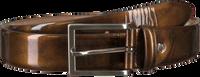 MAZZELTOV Ceinture B102 en marron  - medium