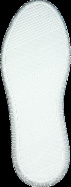 OMODA Baskets basses INGEBORG 1-CAF en beige  - large