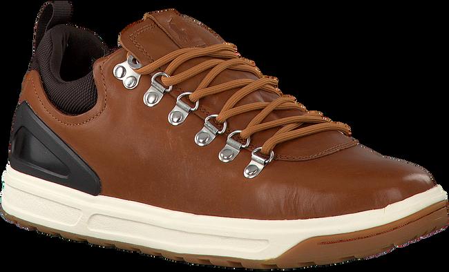 Cognac POLO RALPH LAUREN Sneakers ADVENTURE  - large