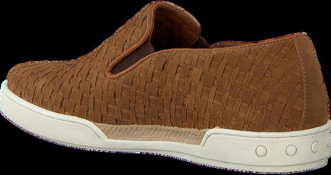 MAZZELTOV Chaussures à enfiler 51129 en cognac  - large