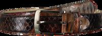 REHAB Ceinture BELT SNAKE en marron  - medium