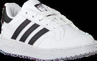 Witte ADIDAS Lage sneakers TEAM COURT C  - medium
