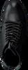 STEVE MADDEN Bottines LAURIE en noir - small