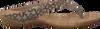 beige DKNY Slippers SARASOTA  - small