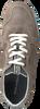 Taupe FLORIS VAN BOMMEL Lage sneakers 16446  - small