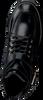 NUBIKK Bottines à lacets DJUNA AUBINE en noir  - small