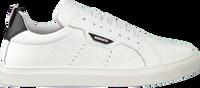 ANTONY MORATO Baskets basses MMFW01248 en blanc  - medium