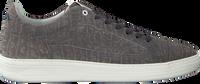 Grijze FLORIS VAN BOMMEL Lage sneakers 13265  - medium