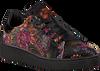 Zwarte TANGO Sneakers MANDY 1  - small