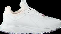 Witte EKN FOOTWEAR Lage sneakers LARCH DAMES  - medium
