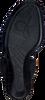 CALVIN KLEIN SANDALEN N11400 - small
