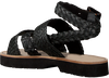 SCOTCH & SODA Sandales PHIONA en noir  - small