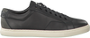 Black PUMA shoe FUTURE CAT BIG  - small