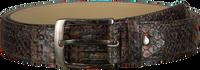 REHAB Ceinture BELT SNAKE FANTASY en marron - medium