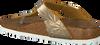 bronze BIRKENSTOCK PAPILLIO shoe GIZEH SPECTRAL  - small