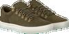 TIMBERLAND Baskets ADVENTURE 2.0 CUPSOLE ALPINE en vert - small