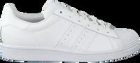 ADIDAS Baskets basses SUPERSTAR DAMES en blanc  - medium