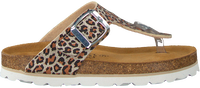 Beige OMODA Slippers 0027  - medium