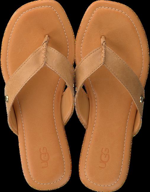 Camel UGG Slippers TUOLUMNE - large