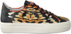 FLORIS VAN BOMMEL Baskets basses 85297 en orange  - small