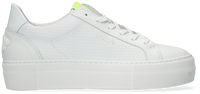 FLORIS VAN BOMMEL Baskets basses 85333 en blanc  - medium