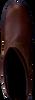 DUBARRY Bottes hautes KILDARE en marron - small