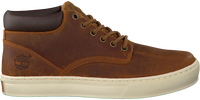 Bruine TIMBERLAND Sneakers ADVENTURE 2.0 CUPSOLE  - medium