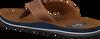 brown AUSTRALIAN shoe DOMBURG AT SEA  - small