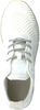 GANT Baskets LINDA en blanc - small