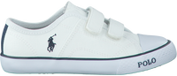 POLO RALPH LAUREN Baskets DAYMOND EZ en blanc - medium