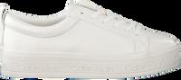 Witte CALVIN KLEIN Sneakers JAELEE  - medium