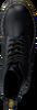 DR MARTENS Bottines à lacets PASCAL en noir - small