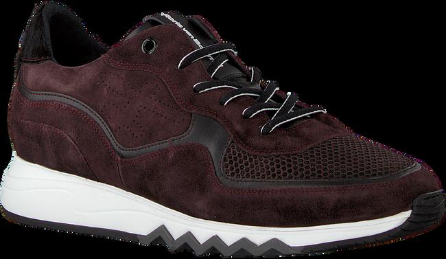 Rode FLORIS VAN BOMMEL Sneakers 16093  - large