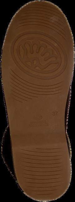 SHABBIES Bottines 202024 en marron - large