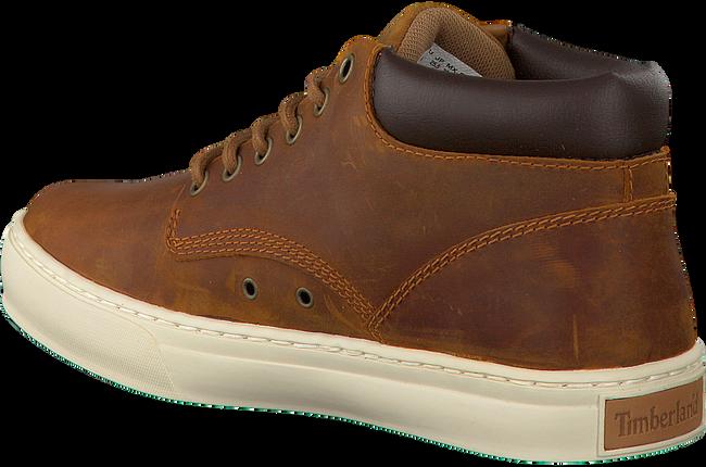 Bruine TIMBERLAND Sneakers ADVENTURE 2.0 CUPSOLE  - large