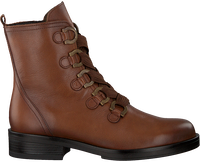 GABOR Bottines à lacets 660.1 en cognac  - medium