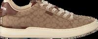 Camel COACH Lage sneakers ADB SIG JACQUARD LOW TOP - medium