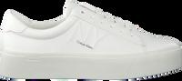Witte CALVIN KLEIN Lage sneakers JAMELLA  - medium